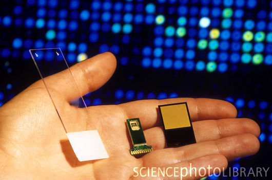biochip technology We're closer than ever to technological singularity thanks to biochips and  brain implants ✅ think it's far-fetched prepare to have your.