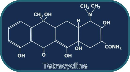 Tetracycline lymecycline acne - Augmentin dosage 625 mg